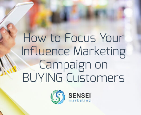 influence marketing campaign on buyers